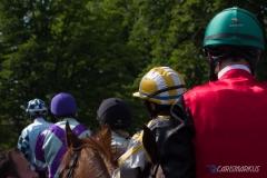 Bunte Helme