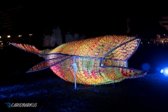 Leuchtender Wal