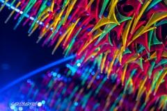 Crazy Lights (I)