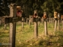 Cemetary of the insane