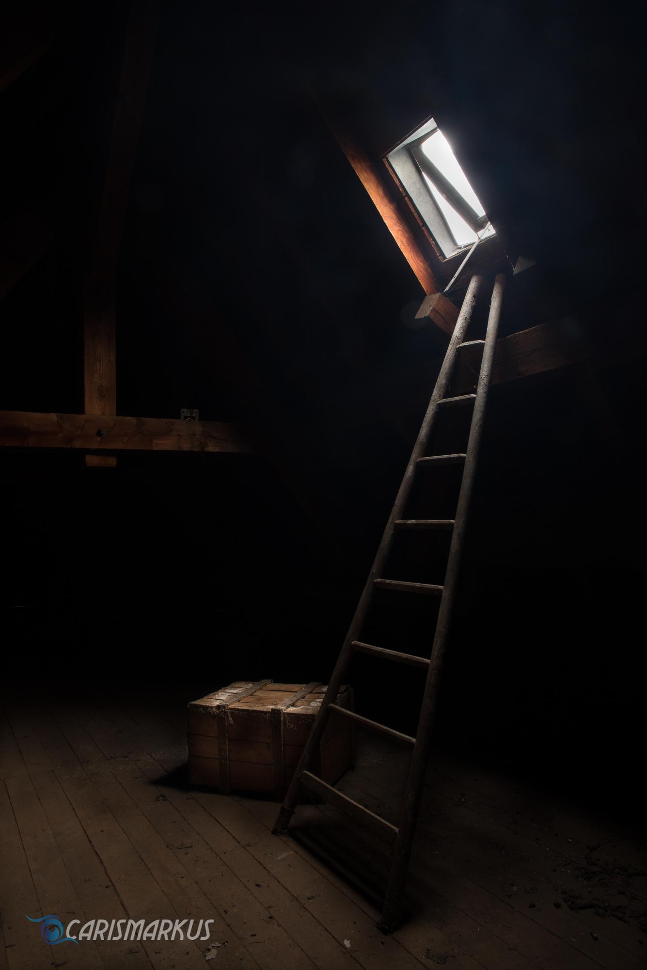 Ladder to a friend