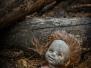 Kindheitserinnerungen Tschernobyl