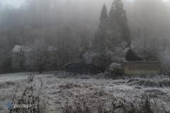 Schwarzwaldidylle