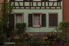 Fenster mit Blick auf den Garten