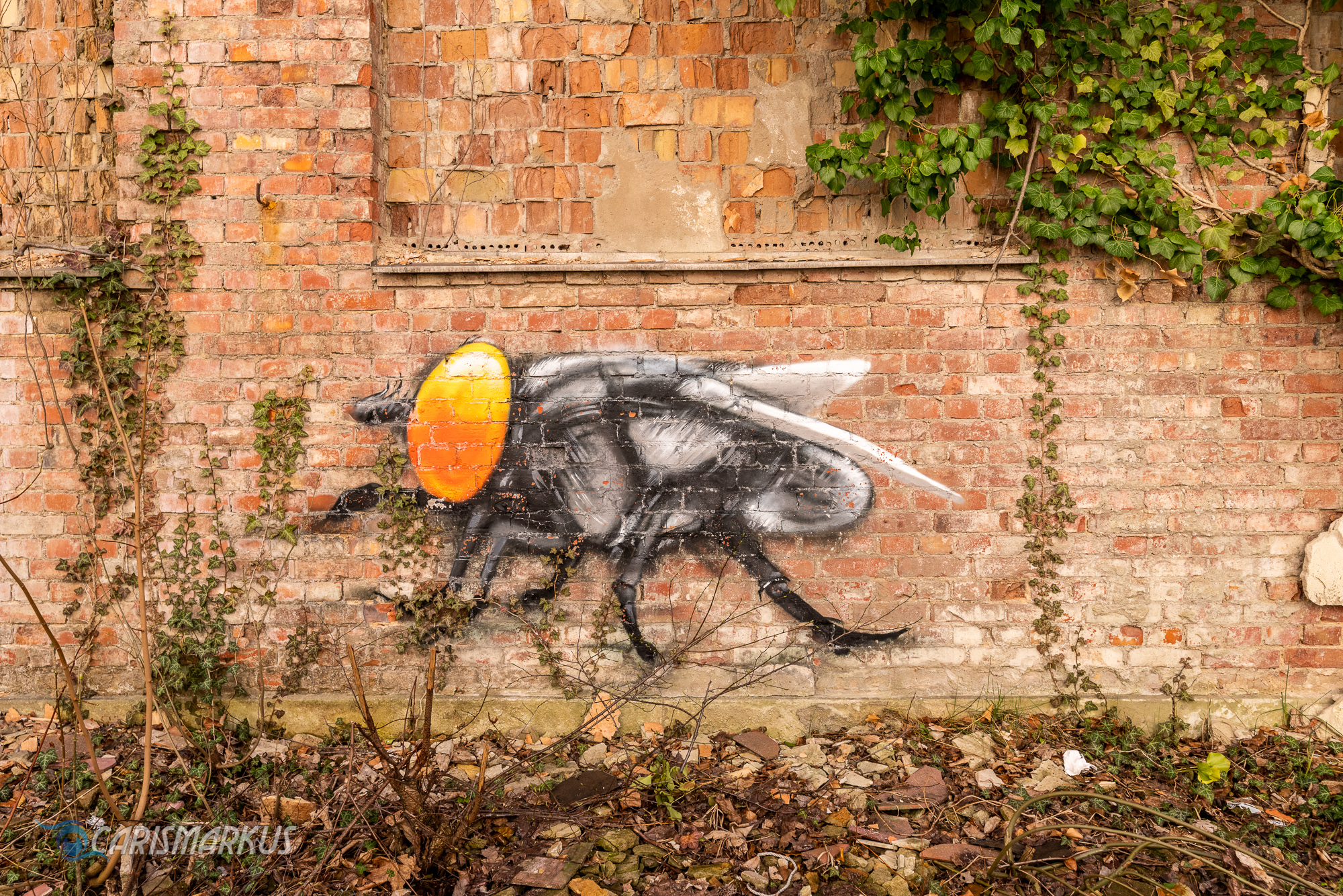 Die Fliege auf der Backsteinmauer (Plotbot Ken)